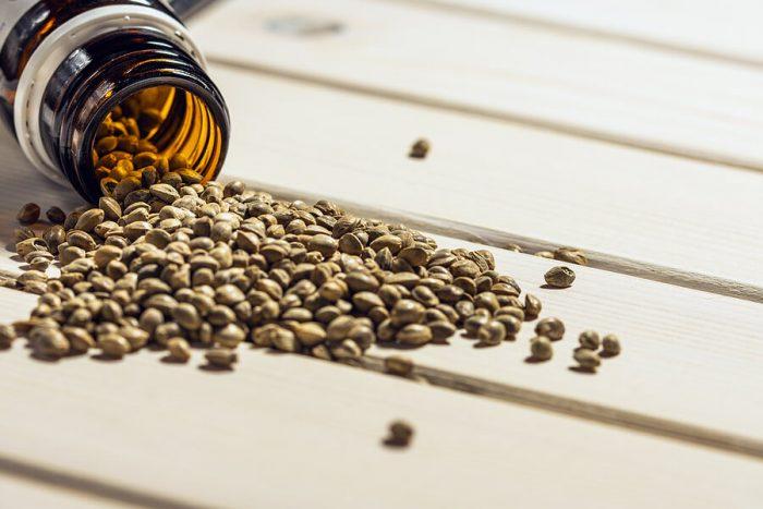Store Marijuana Seeds