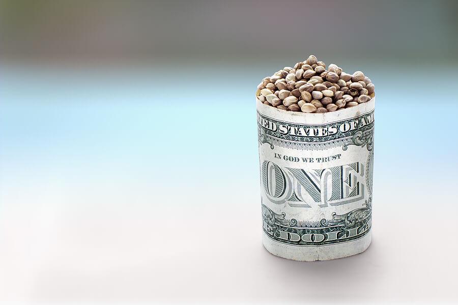 Bigstock Hemp Seeds In One Dollar Barre 87103625 1