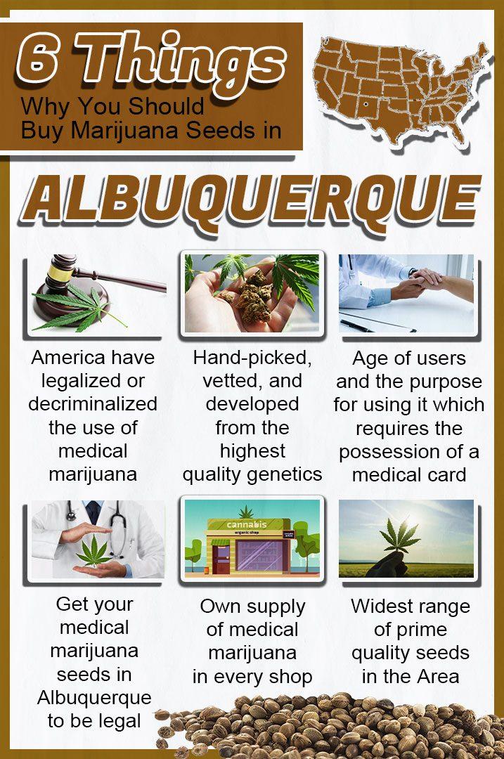 Buy Marijuana Seeds In Albuquerque E1614133841693