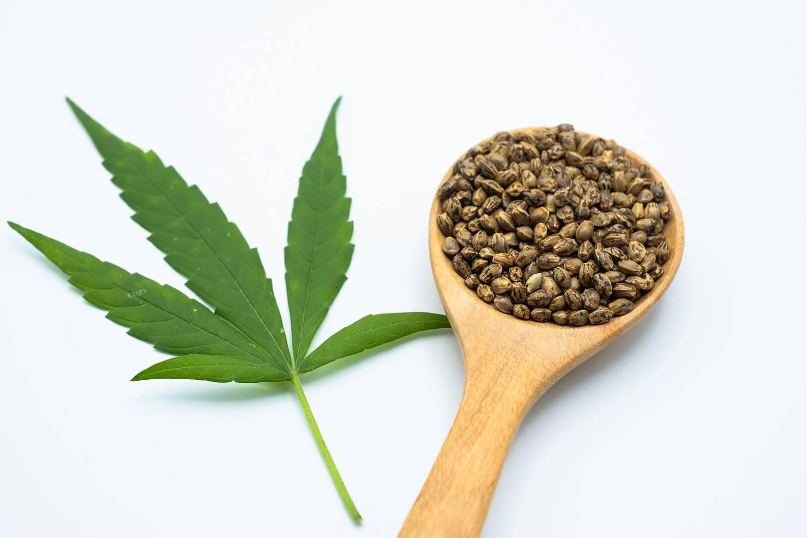 Buy Marijuana Seeds In Fort Worth 1
