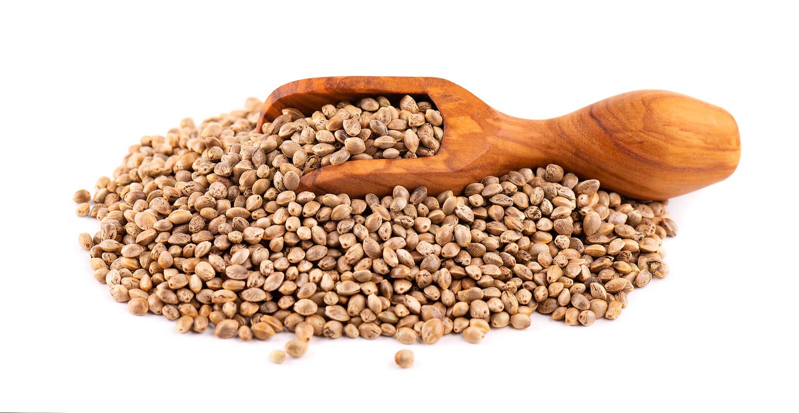 Buy Marijuana Seeds In Canajoharie