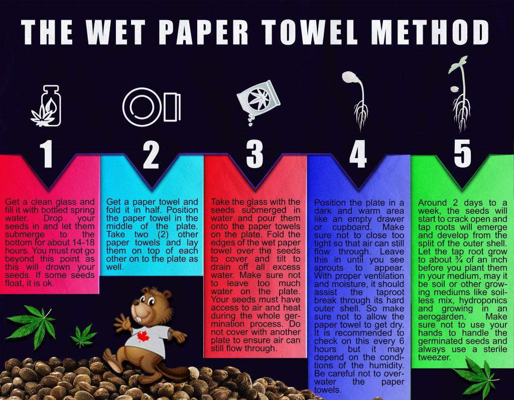 wet paper towel method