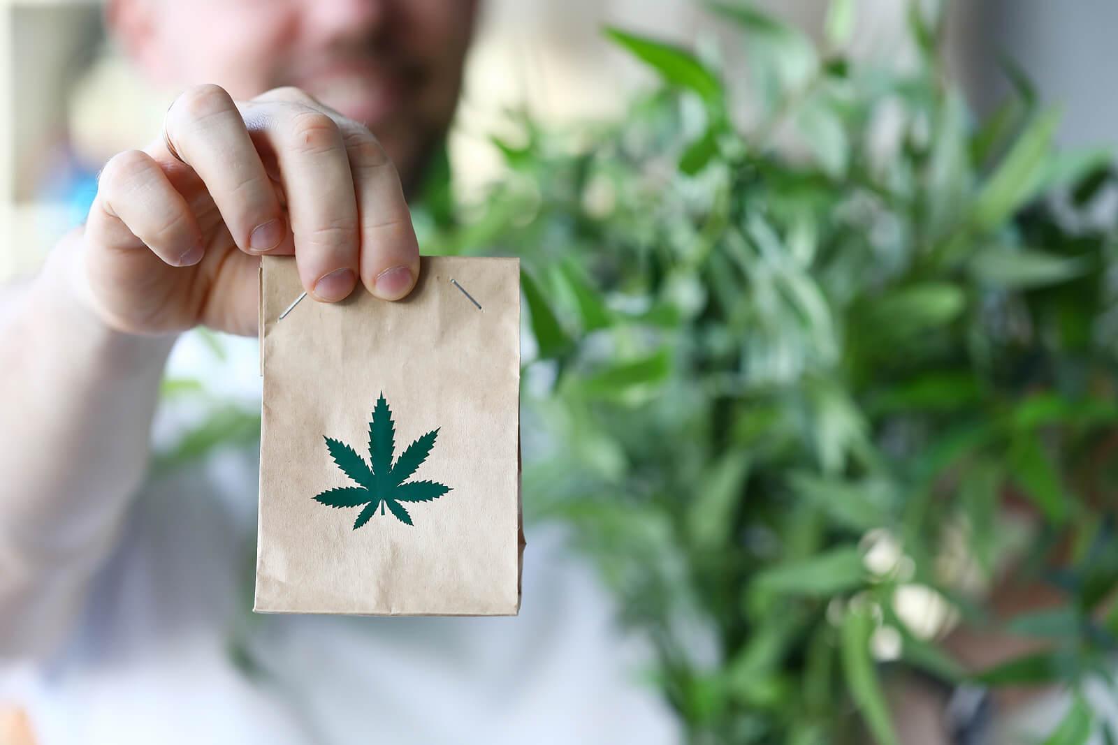 where to buy marijuana seeds in Montreal