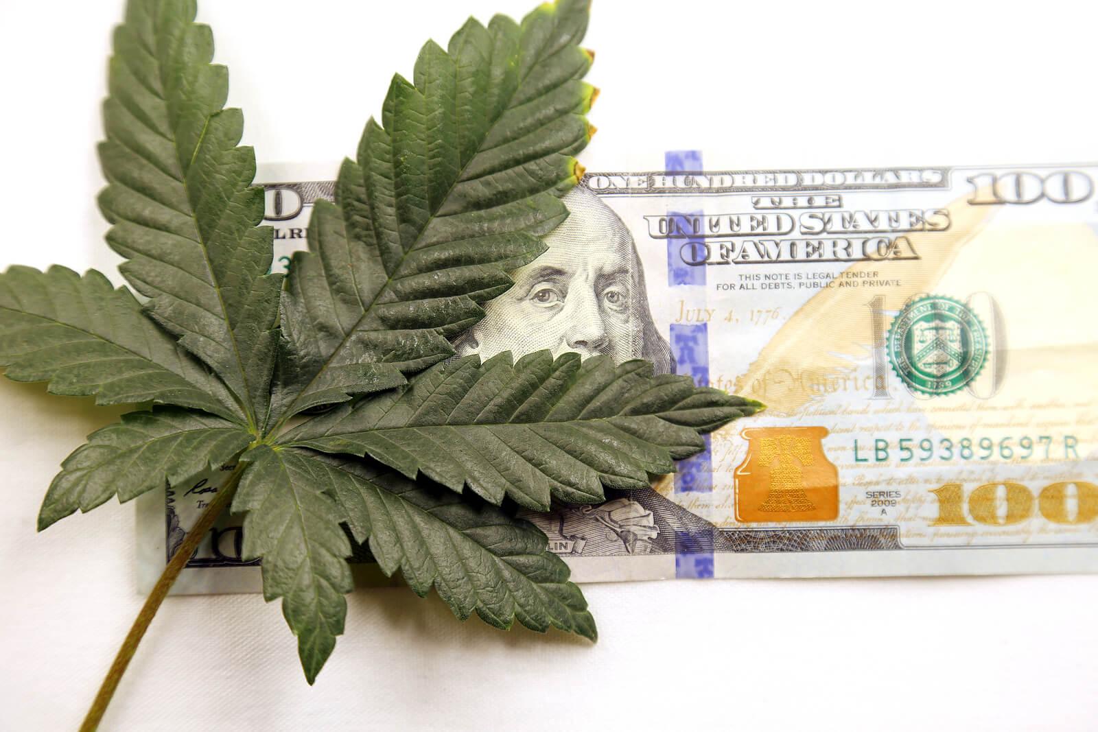 marijuana seeds California